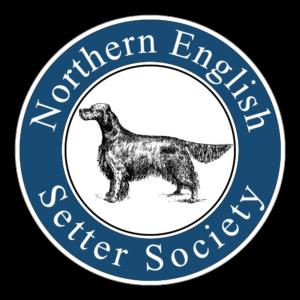 NESS Logo